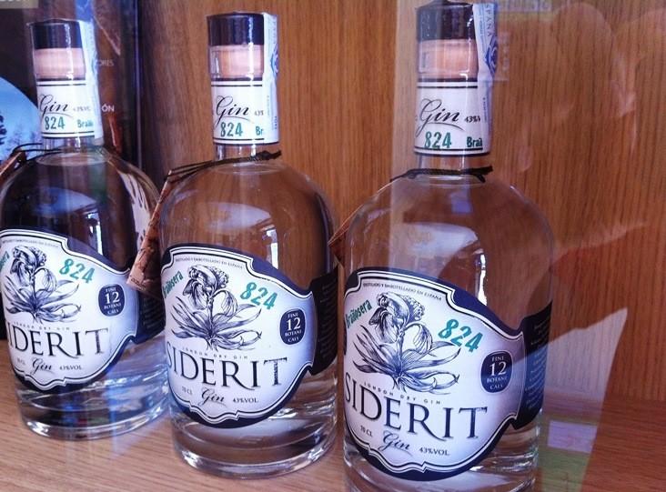 Gin 824 Brañosera